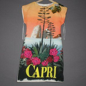 Dolce & Gabbana Capri Dress